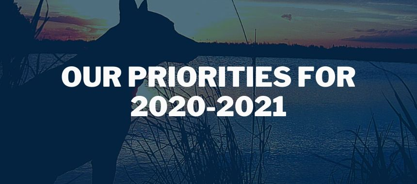 Our priorities for 2020-2021