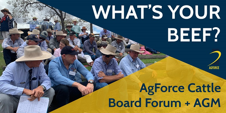 What's Your Beef? AgForce Cattle AGM 5 November
