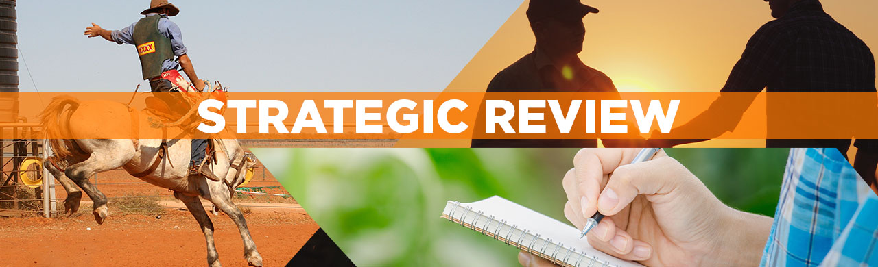 2021 STRATEGIC REVIEW - Weekly discussions + one-question survey